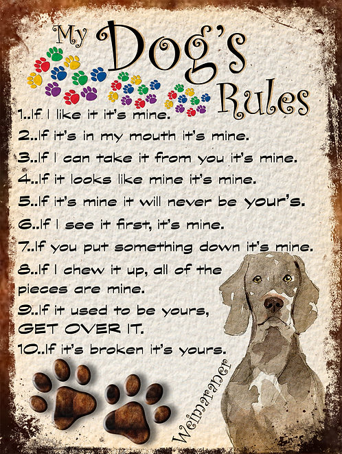 Weimaraner My Dogs Rules Retro Metal Sign / Fridge Magnet Shabby Chic