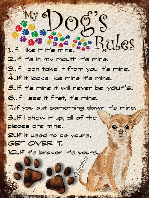 My Dogs Rules Chihuahua Retro Metal Sign / Fridge Magnet