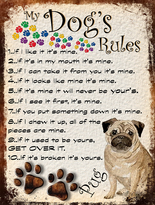 My Dogs Rules Pug Retro Metal Sign / Fridge Magnet