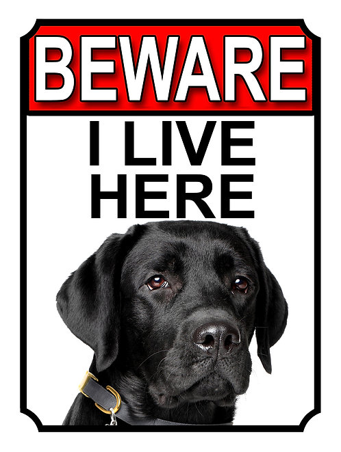 Black Labrador Beware I Live Here Dog Breed  Garden Yard Gate Sign 1110H1
