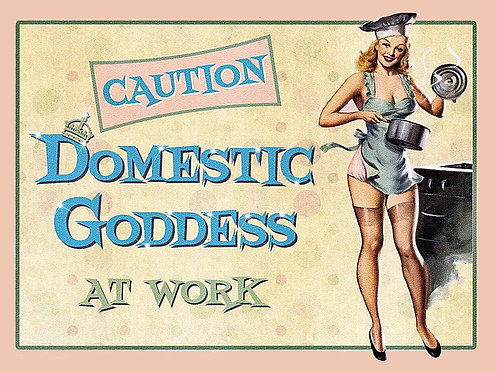 Domestic Goddess, Retro Metal Sign / Fridge Magnet Pub Bar Man Cave