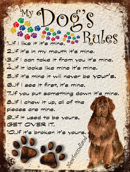 Newfoundland My Dogs Rules Retro Metal Sign / Fridge Magnet Shabby Chic