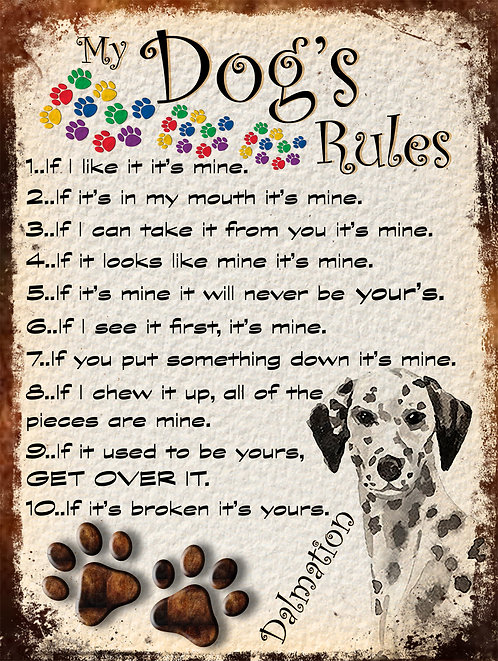 My Dogs Rules Dalmation Retro Metal Sign / Fridge Magnet