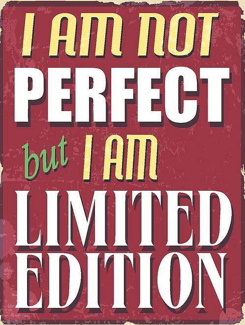 I Am Not Perfect, Retro Metal Sign / Fridge Magnet Pub Bar Man Cave