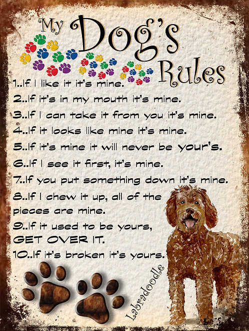 Labradoodle My Dogs Rules Retro Metal Sign / Fridge Magnet Shabby Chic