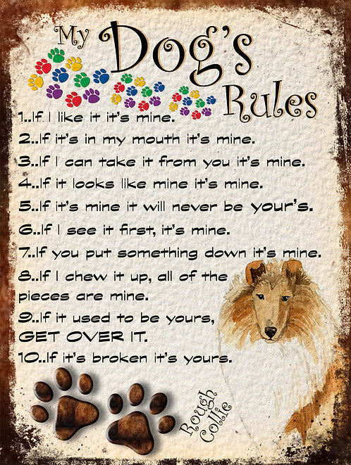 Rough Collie Dog My Dogs Rules Retro Metal Sign / Fridge Magnet Shabby Chic