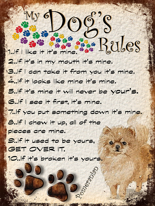 My Dogs Rules Pomeranian Retro Metal Sign / Fridge Magnet