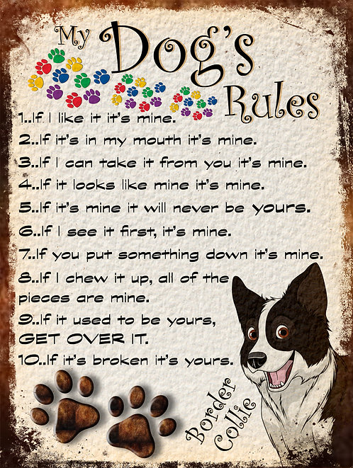 Border Collie My Dogs Rules Retro Metal Sign / Fridge Magnet Shabby Chic Gift
