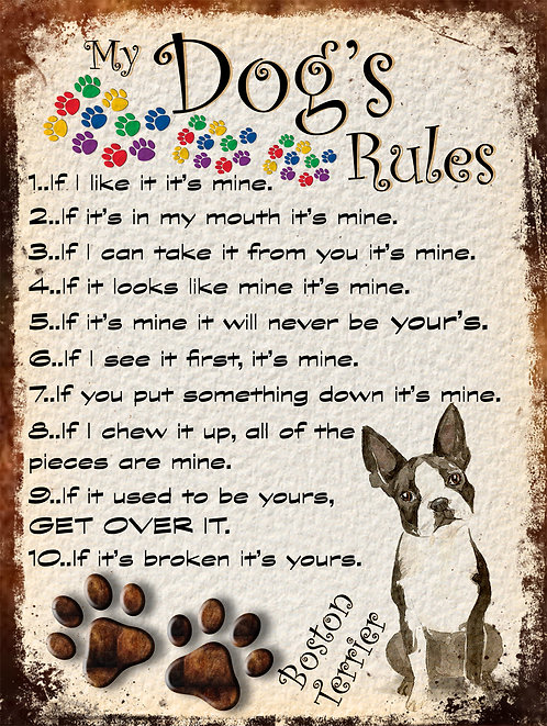 My Dogs Rules Boston Terrier Retro Metal Sign / Fridge Magnet