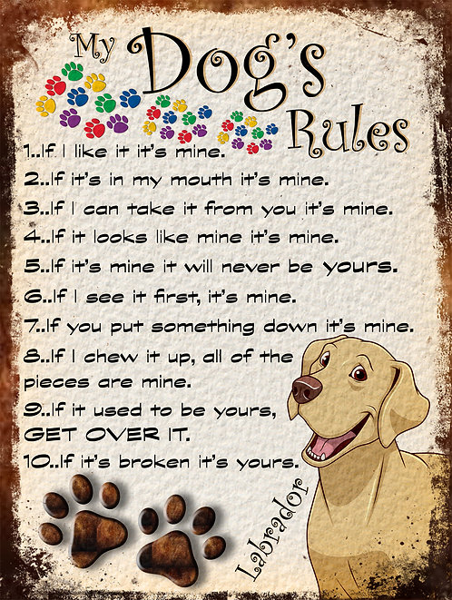 Labrador Gift My Dogs Rules Retro Metal Sign / Fridge Magnet Shabby Chich