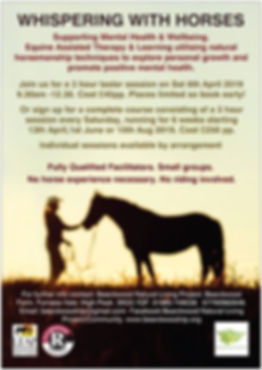 whispering with horses poster.jpg