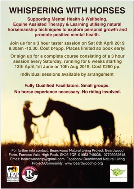 whispering with horses poster.jpg