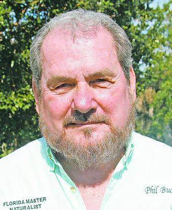 Phil Buchanan