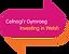 cefnogir-gymraeg-100-78.png