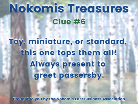 Nokomis Treasures: CLUE #6