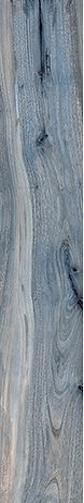 Kauri Tasman 8x48