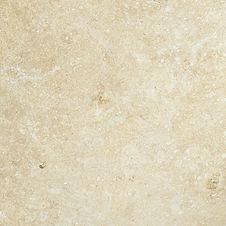Seashell Limstone