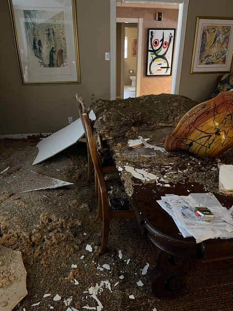 Dining Room damage.jpg