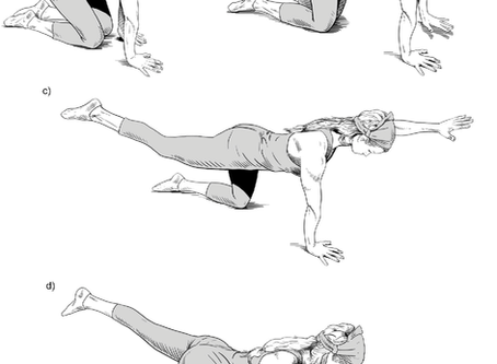 Lower back strength: A brief introduction