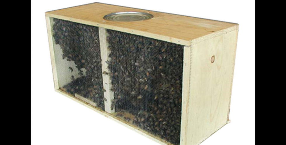 3lb package Italian Honey bees