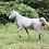 Thumbnail: Unicorn Experience (photos and rides)
