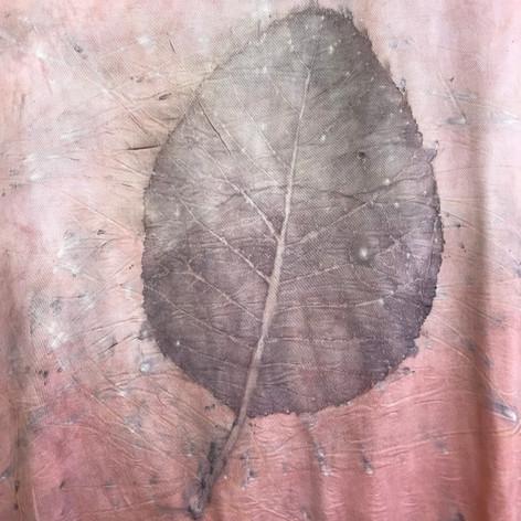 cotinus (fustic) exo print on madder
