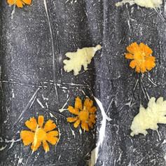 חיתוך אקולוגי עם צמחים מקומיים