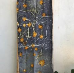 חצץ אקו עם פרחי אביב