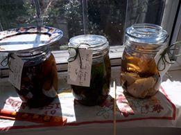 World Wide Slow Dye Jars