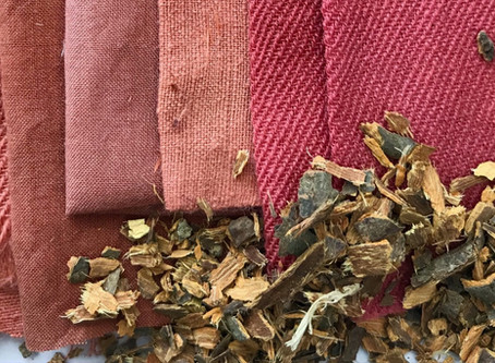 Dyeing fabrics with Alder Buckthorn