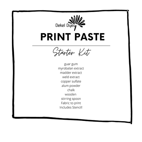 The Print Paste Kit (with instructions)