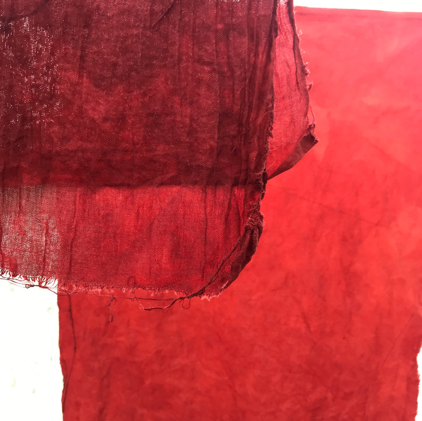Stunning results with madder on cotton with alum acetate mordant