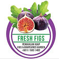 figs and grapevine.jpg