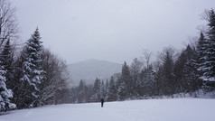 Janvier 2019 | Leadership Niveau Intermédiaire | Adirondacks