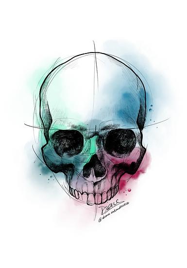 Human Skull Color