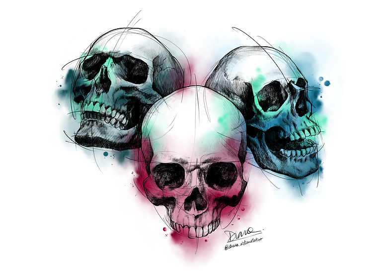 3 Human Skull Color