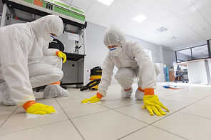 Viral decontamination services from Reaction Group