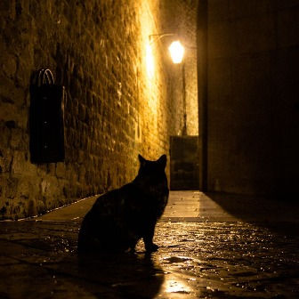 Dark tales of the Old Town