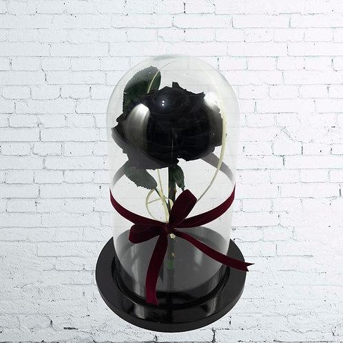 Rosa Preservada Black