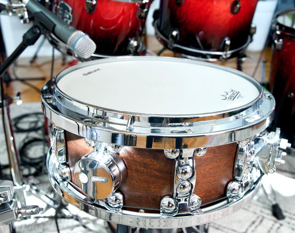Dial Tune 14' Maple Snare