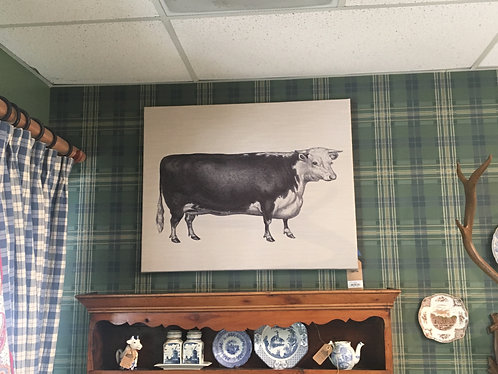 Cow on Canvas Picture