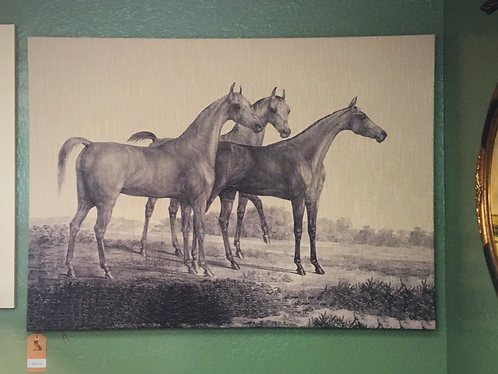 Horses on Canvas Picture