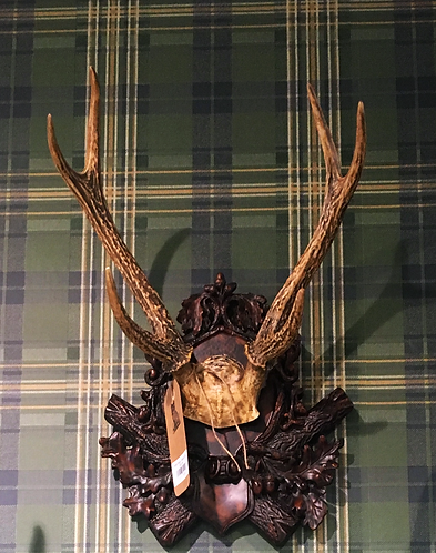 Antlers (Small)