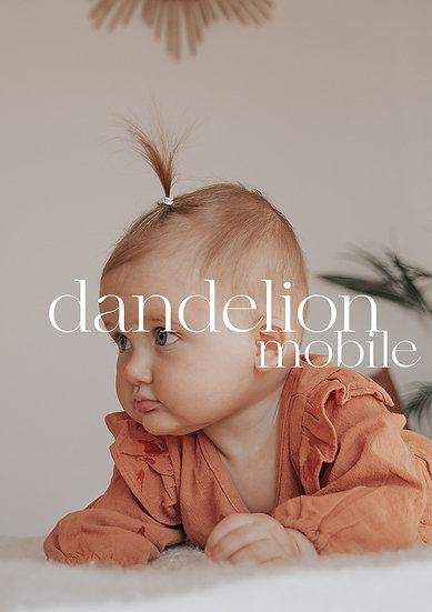Dandelion Mobile 8 presets Pack