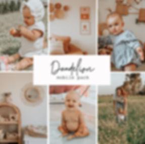 Dandelion mobile.jpg