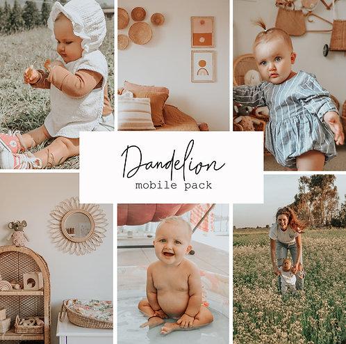 Dandelion Mobile 4 presets Pack