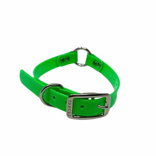 """3/4"""" DayGlo Dog Collar"""