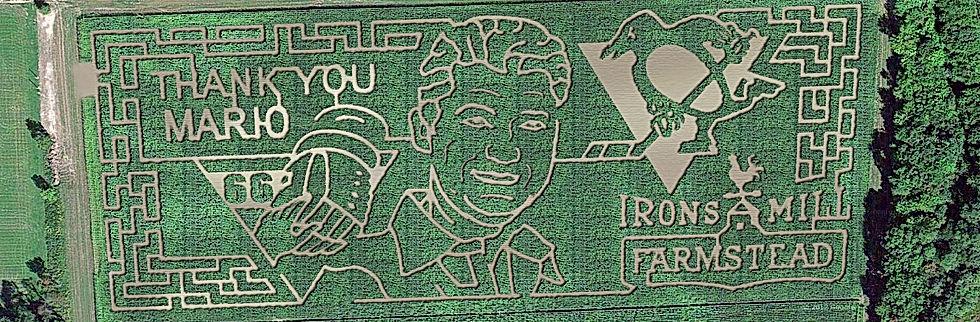 corn maze fall fun hayrides pumpkin patch