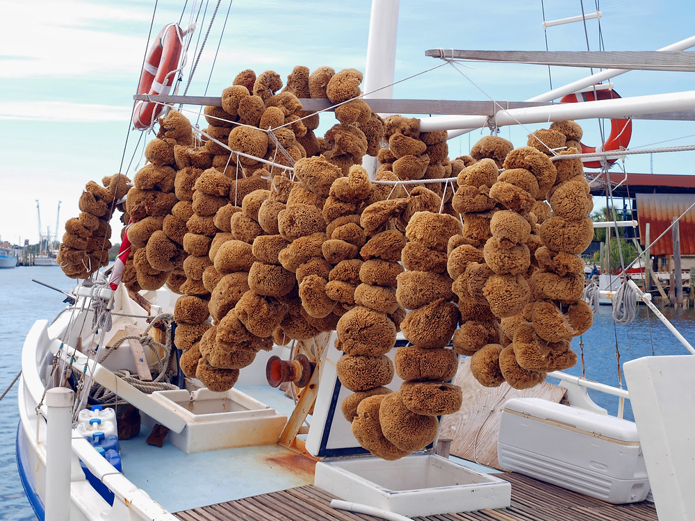 Sponges drying on boat in Tarpon Springs