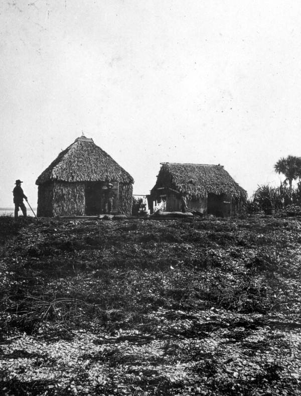 Palmetto thatch huts, courtesy of State Archives of Florida, Florida Memory